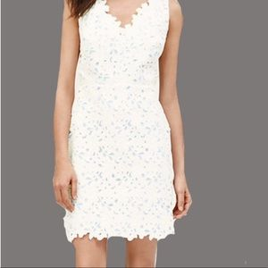 LOFT l White Lace Floral Overlay Dress